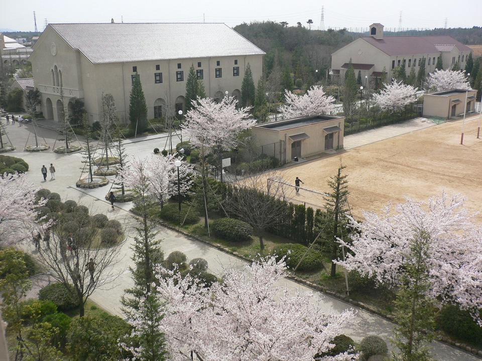 関西学院大学理工学部情報科学科◆春の神戸三田キャンパス(KSC)◆
